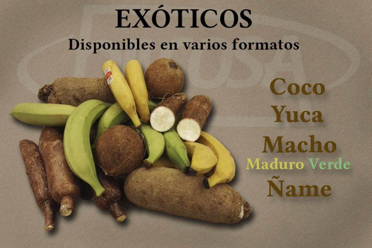 Productos Exóticos Bilcosa Mercabilbao Coco Yuca Plátano Macho Maduro y Verde Ñame